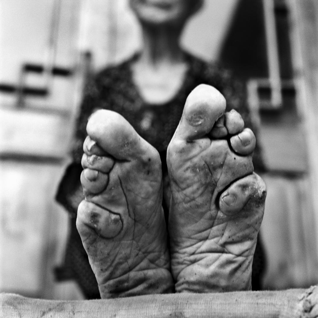 Zhao Hua Hong detail, 84, [2010] (1926-2013)
