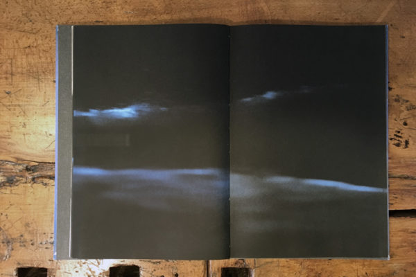The Restoration Will - ceiba editions